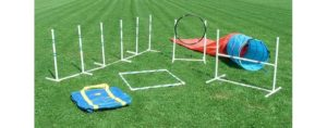 agility-training-kit